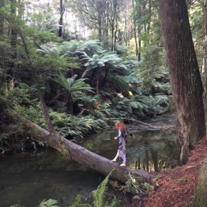 Girl walking on a fallen log in the Redwood Forest, The Otways, Great Ocean Road