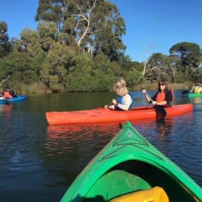 People kayaking on the Anglesea River Great Ocean Road